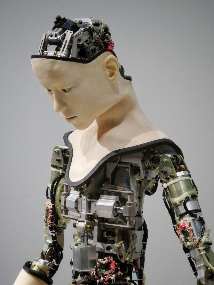 ¿los robots nos sustituyen?